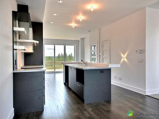 cuisine-maison-en-rangee-de-ville-a-vendre-sherbrooke-quebec-province-large-3105108